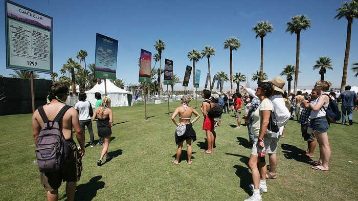 We Reviewed Every Band Playing Coachella 2020