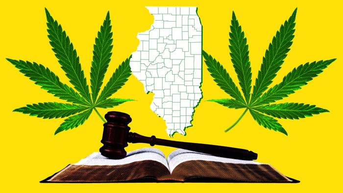How to Expunge Your Record for Cannabis Crimes: Illinois