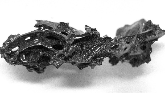 This Shimmering Black Rock Is a 2,000-Year-Old Exploded Brain