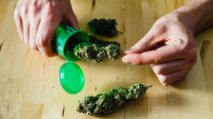 The Truth About Losing Weight With Weed
