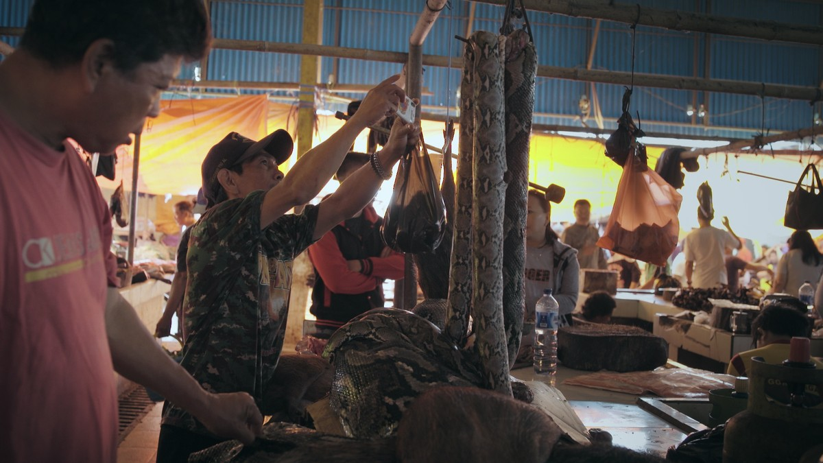 This Exotic Meat Market in Indonesia Could Be a Breeding Ground for the Coronavirus