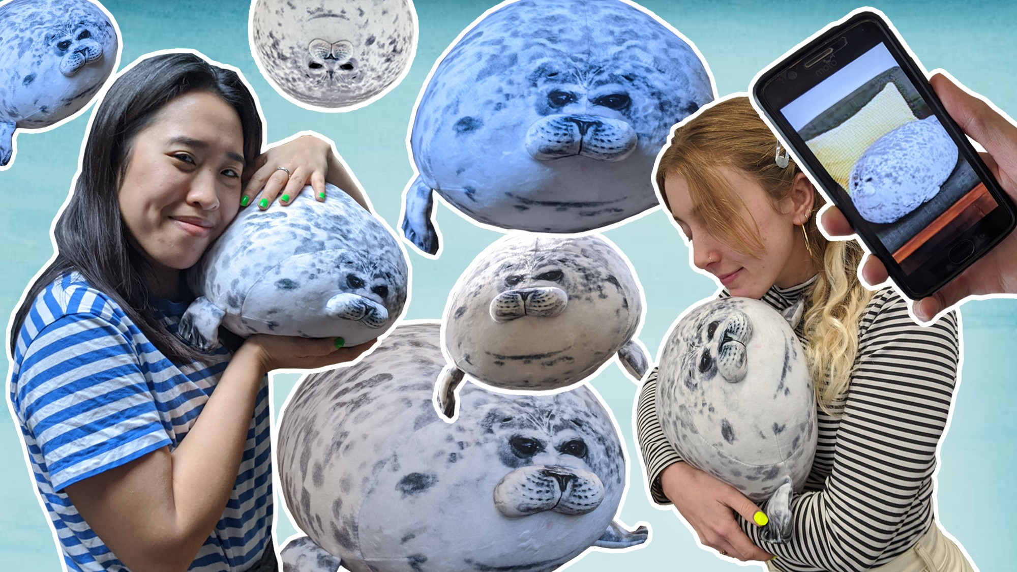 Image result for three angry seal pillows