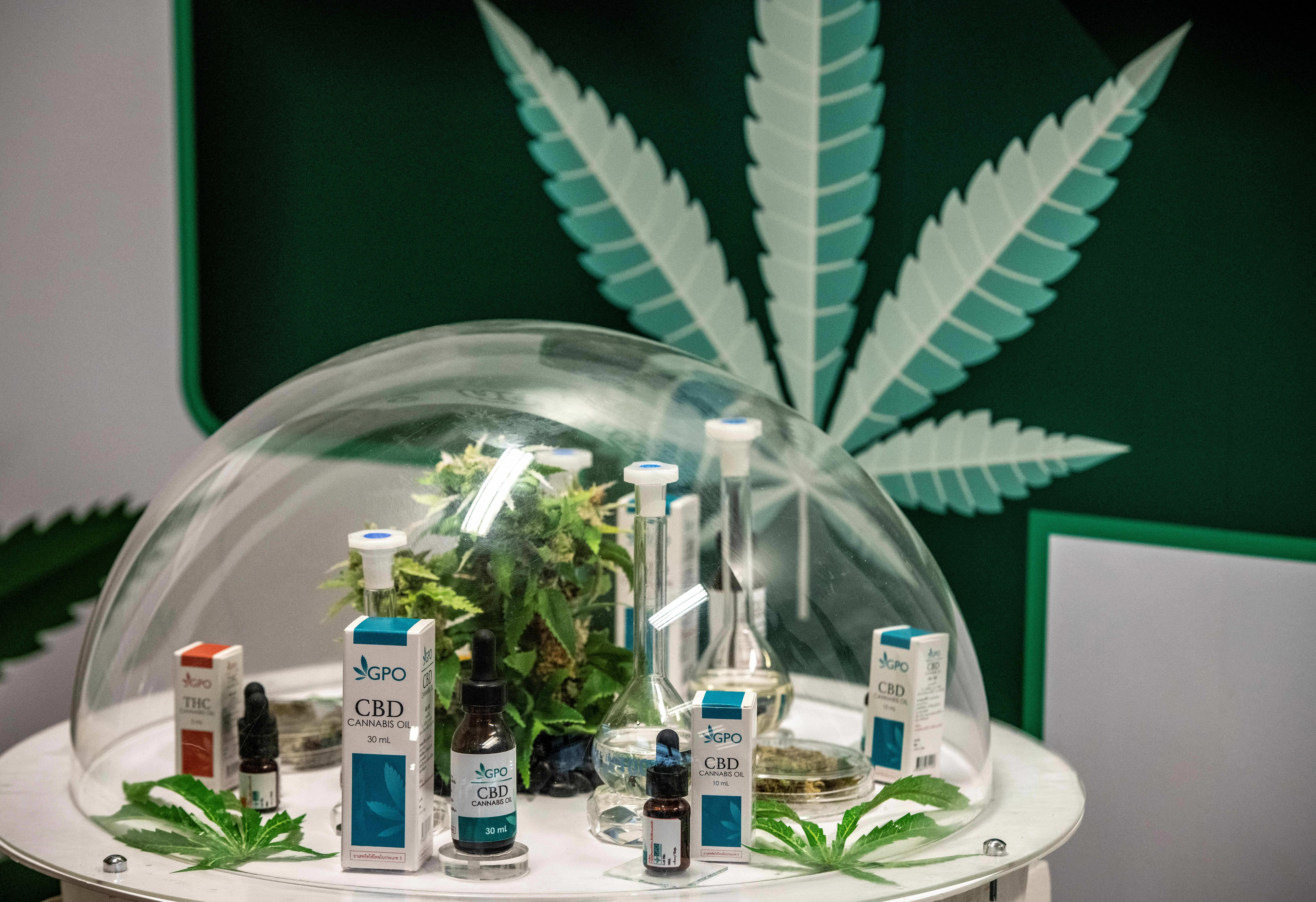 post-image-Thailand Hopes Medical Marijuana Will Boost its Lagging Economy. But Not Everyone's Convinced.