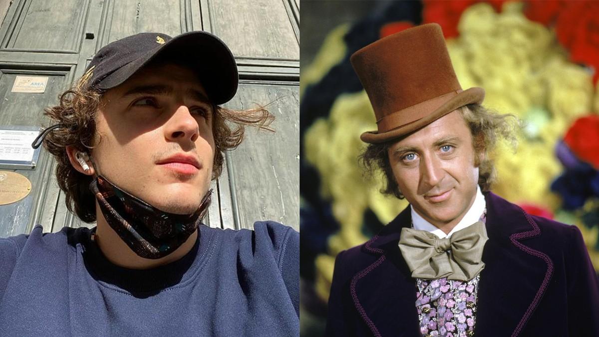 Timothée Chalamet akan berperan sebagai Willy Wonka dalam film aslinya