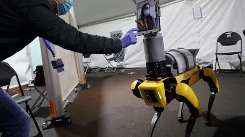 Die Polizei von Honolulu setzte einen Roboterhund ein, um in Lager von Obdachlosen zu patrouillieren und Körpertemperaturen zu messen
