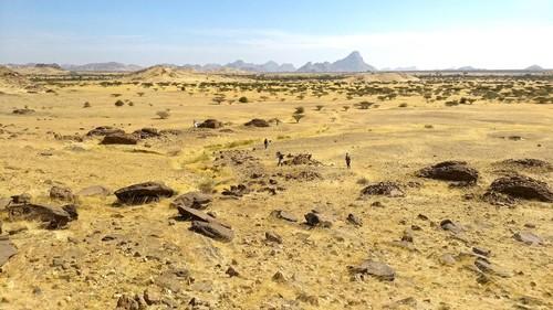 Sono state scoperte migliaia di tombe antiche disposte come le stelle di una galassia