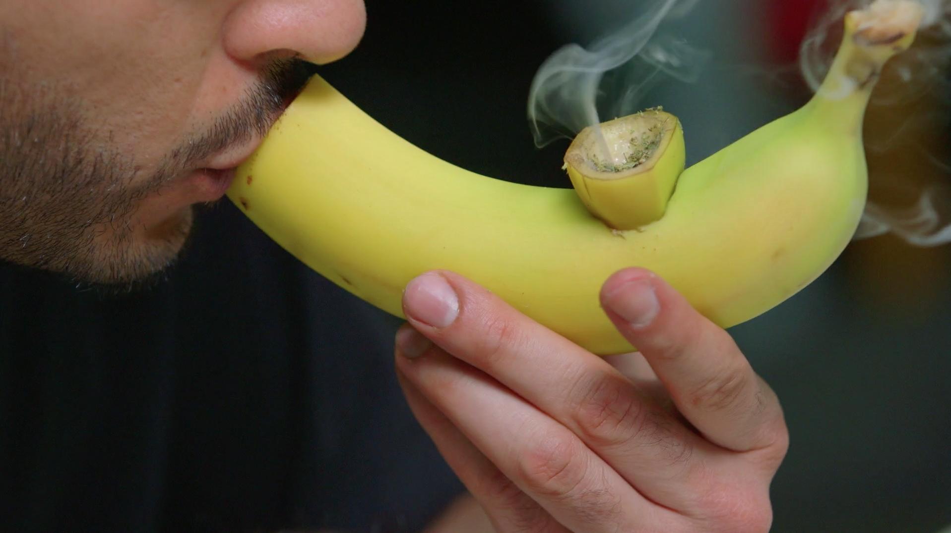 UM BONGO BOWL A FUMAR BAIXAR SMOKE