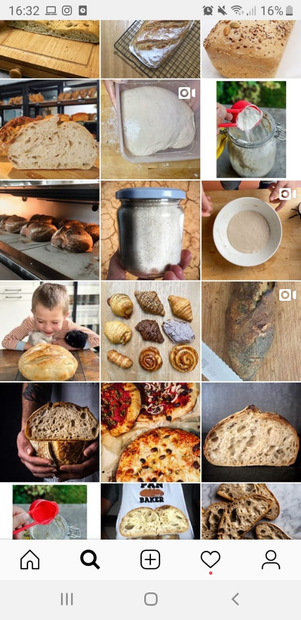 Instagram feed pan
