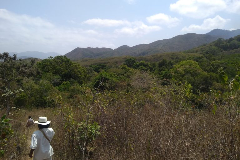 Paisaje en la Sierra Nevada de Santa Marta. Foto: Applied Biodiversity Foundation.