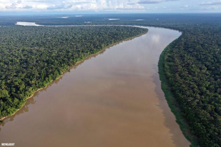 FOTO 6 - El río Javari en la Amazonía peruana. Foto: Rhett A. Butler.
