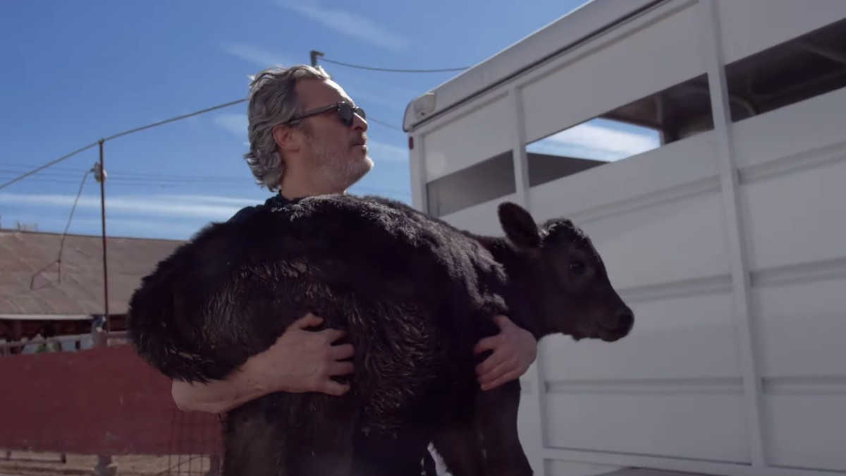 Watch Joaquin Phoenix Free a Cow From a Slaughterhouse