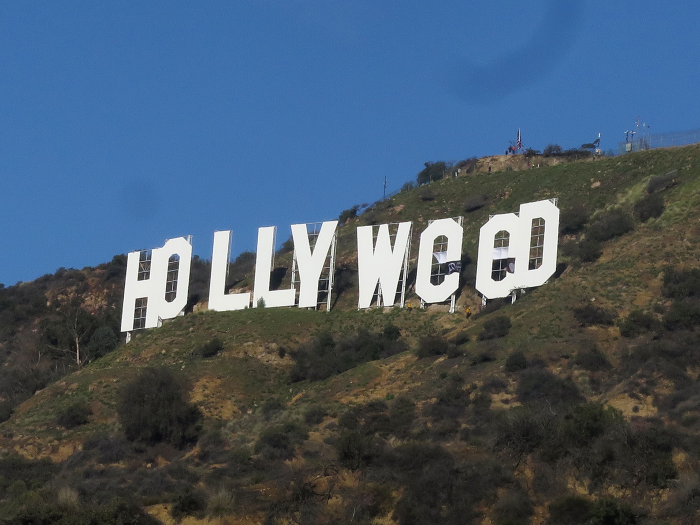 these guys claim they re responsible for the hollyweed sign vice photo by jamie lee curtis taete