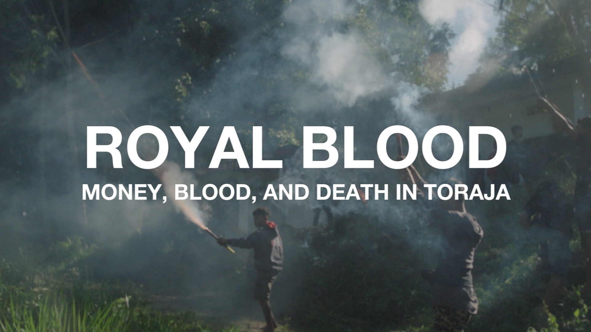 Royal Blood: Inside Indonesia's Lavish, Bloody Funeral Ceremonies