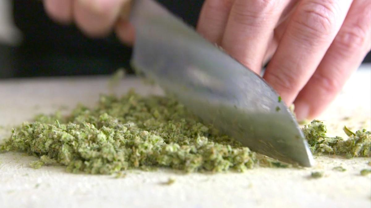 Cannabis aus der Apotheke: Die Bundesregierung versagt schon wieder - VICE