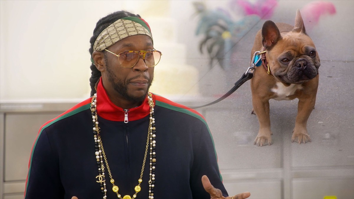 2 Chainz Cake Boss And A 15000 Birthday For Dogs